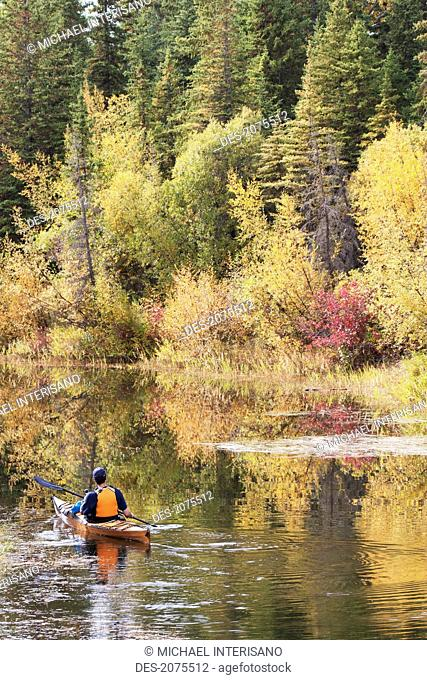 Male Kayaker Paddling On Calm Stream In The Fall With Colours Reflecting On Water, Calgary Alberta Canada