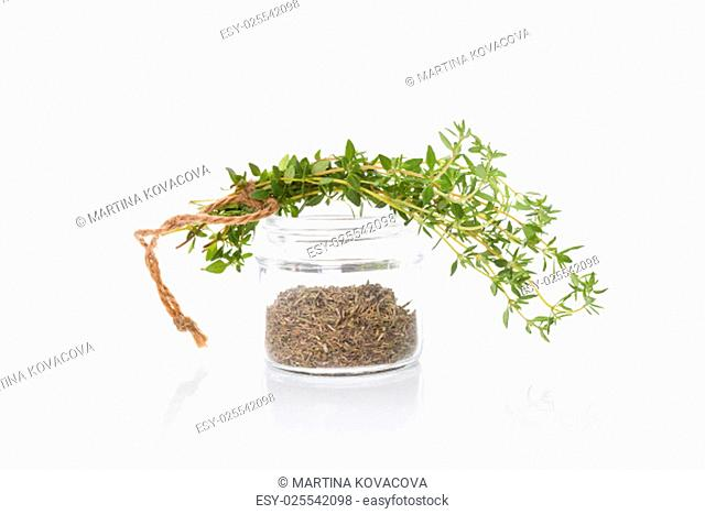 Fresh thyme and dry thyme spice in glass jar isolated on white background. Culinary healthy aromatic herbs. Culinary arts