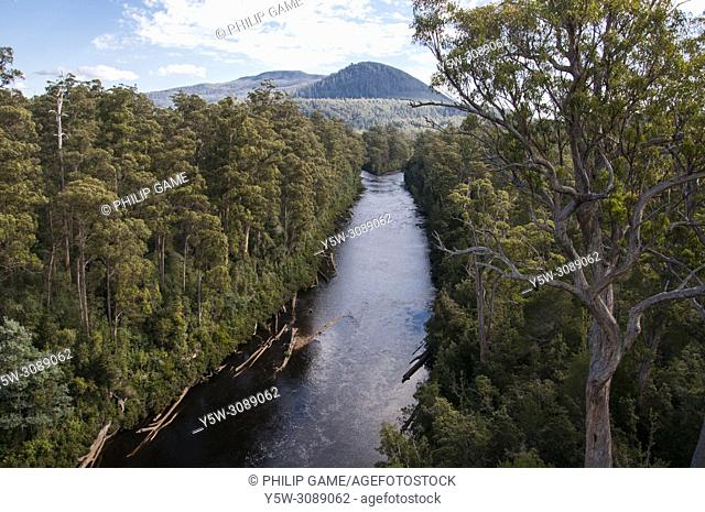 Fork of the Picton and Huon Rivers seen from the Tahune AirWalk, an overhead walkway through the Tahune Forest Reserve, Geeveston, southern Tasmania, Australia