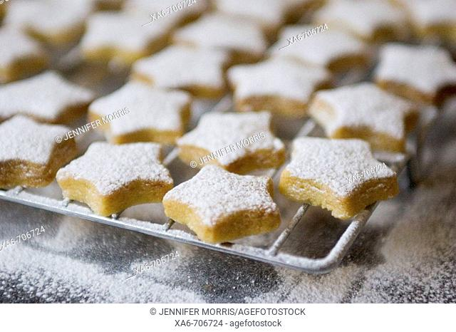 Tiny star-shaped shortbread cookies, dusted with white icing sugar, sit on a silver cooling rack