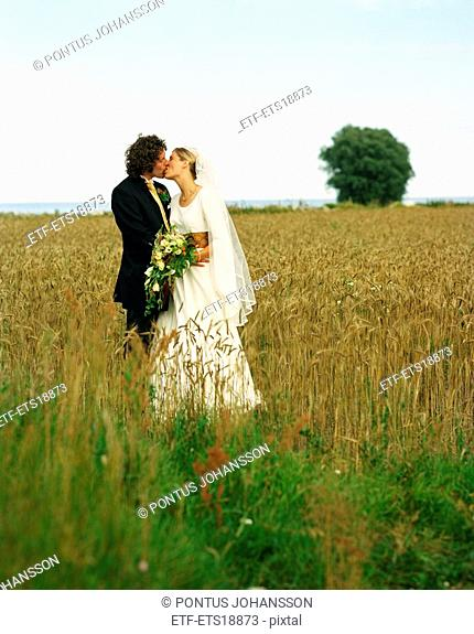 Scandinavia, Sweden, Oland, Bride and groom kissing in field