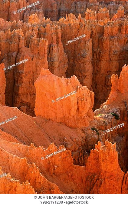 Colorful pinnacles called hoodoos, near Sunset Point, Bryce Canyon National Park, Utah, USA