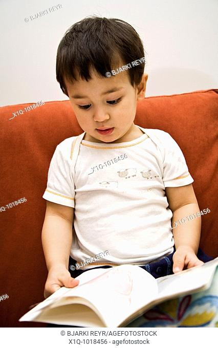 Young boy reading a book at home  Iceland