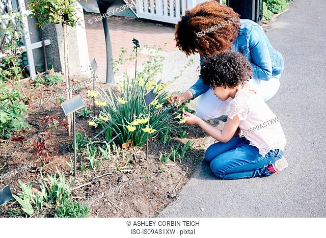 Side view of mother and daughter kneeling looking at plant in flowerbed