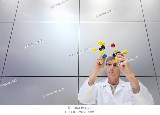 Reseacher holding molecular model