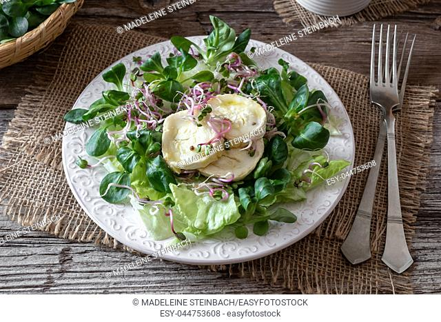 Salad with lamb's lettuce, marinated goat cheese and fresh radish sprouts