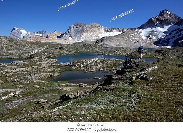 Hiker in Upper Limestone Lakes Basin, Mount Abruzzi, Mount Lancaster, Russell N3, Russel N2, Height of the Rockies Provincial Park, British Columbia, Canada