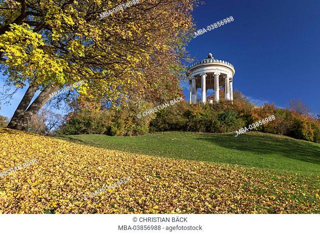 Monopteros temple in the English garden, Munich, Lehel, Upper Bavaria, Bavaria, Germany