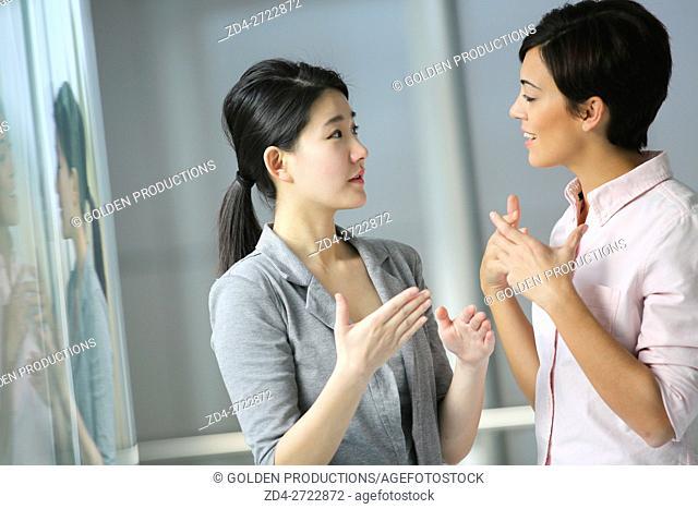 Two Businesswomen having conversation