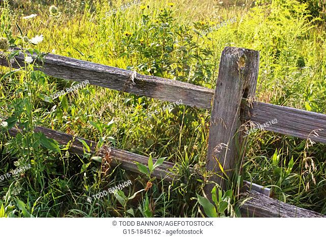 Split rail fence  Nachusa Grasslands Illinois