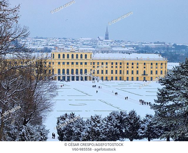 -Shonbrunn Park Palace, in Winter- Wien(Austria)