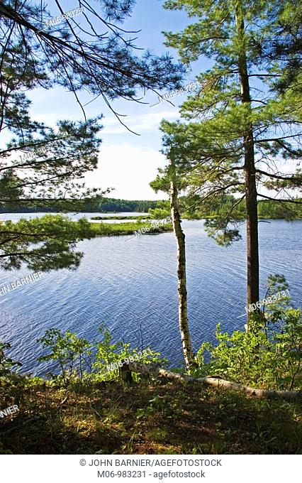 Overlooking Day Lake in the Chequamegon-Nicolet National Forest, Wisconsin USA