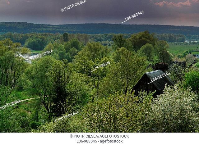 Poland, Podlasie region, river Bug, Mielnik villiage