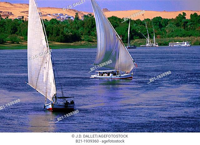 'Felucca' boats on the Nile river at Aswan, Egypt