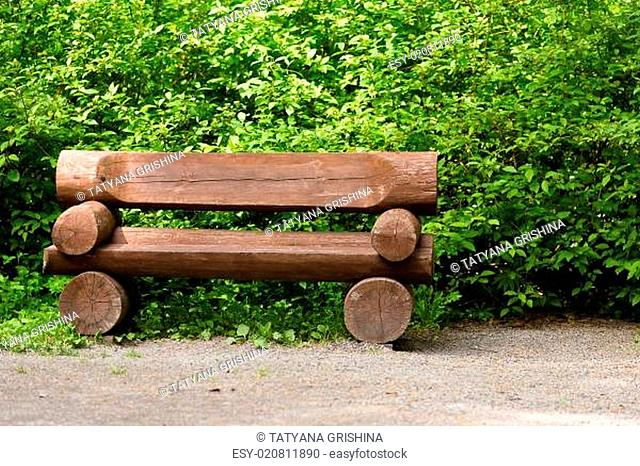 wooden bench in the park on a background of vegetation