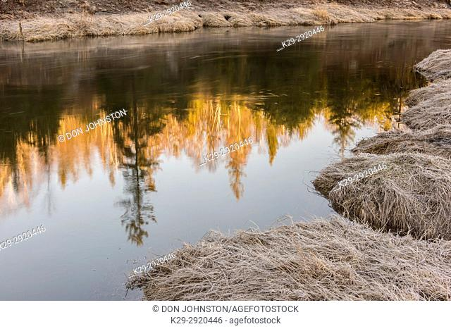 Reflections in Junction Greek in early spring, Greater Sudbury, Ontario, Canada