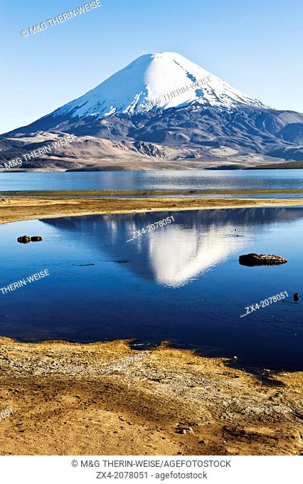 Parinacota volcano reflecting in the Chungara lake, Lauca national park, UNESCO Biosphere Reserve, Arica and Parinacota Region, Chile