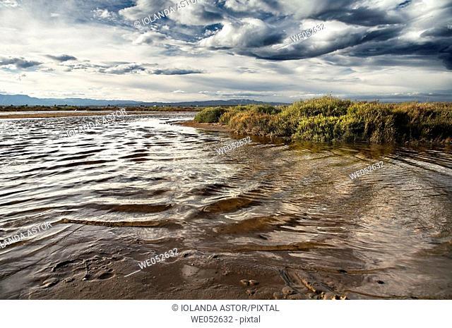 Alfacs bay as seen from Trabucador peninsula, Ebro Delta National Park. Tarragona province, Catalonia, Spain