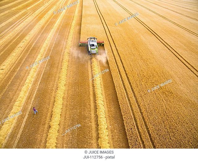 Aerial view of farmer walking toward combine harvester in golden barley field