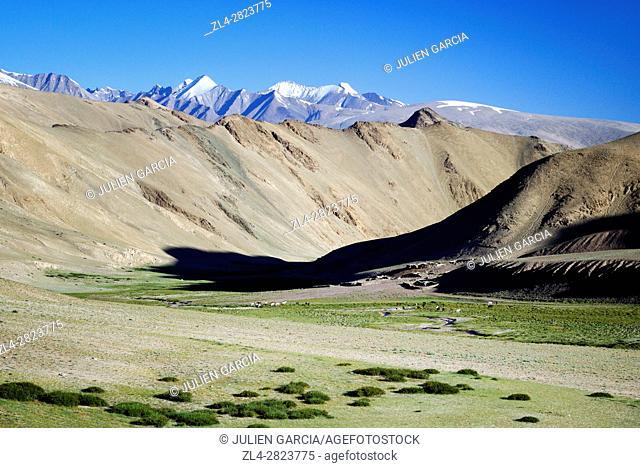 India, Jammu and Kashmir State, Himalaya, Ladakh, high-altitude plateau of Changthang (Changtang), Rumtse to Tso Moriri trek, Kyamar valley near Rumtse