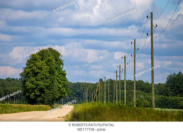 Summer landscape with empty road, trees and blue sky. Electrical poles next to the road. Rural road, cornfield, wood and cloudy blue sky