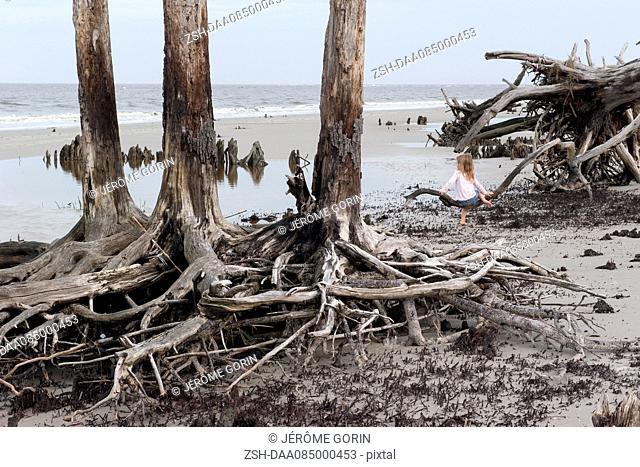 Girl sitting alone on driftwood at beach, Jekyll Island, Georgia, USA