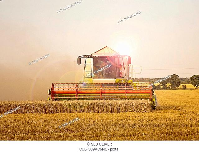 Combine harvester in field, Devon, England, UK