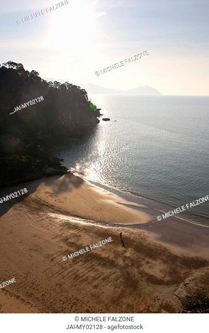 Telok Pandan Kecil Beach, Bako National Park, Sarawak, Malaysian Borneo, Malaysia