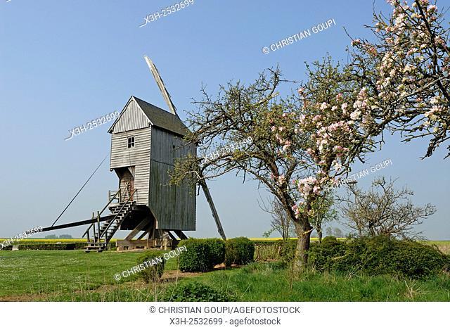 Windmill called Lory near the village of Oucques-la-Joyeuse, Beauce, Eure-et-Loir department, Centre region, France, Europe