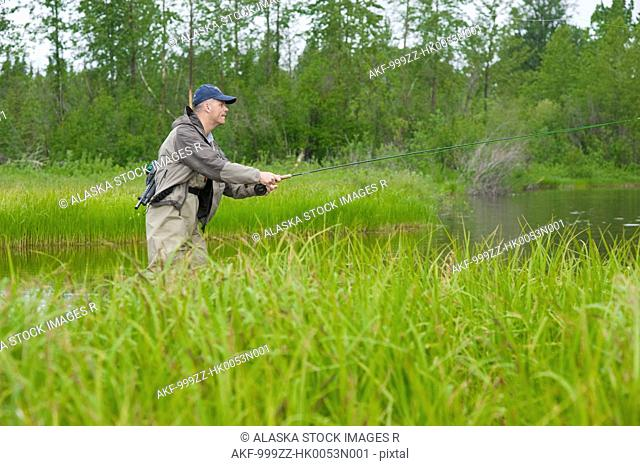 Man fly fishing for King salmon in a backcountry river, Southcentral Alaska, Summer