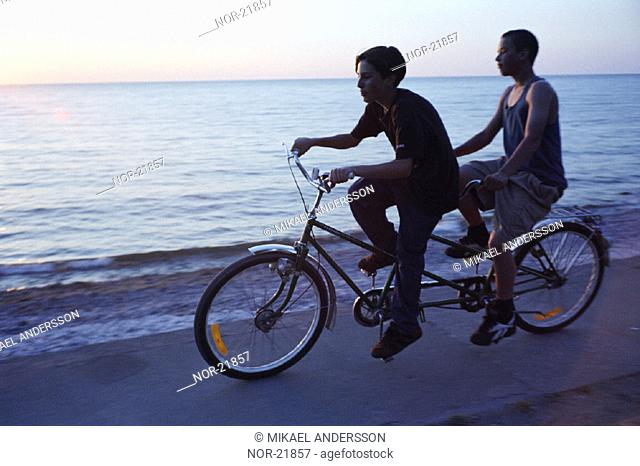 Two boys bicycling along the seaside, Gotland, Sweden