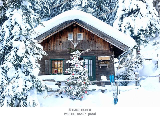 Austria, Altenmarkt-Zauchensee, Christmas tree at wooden house in snow