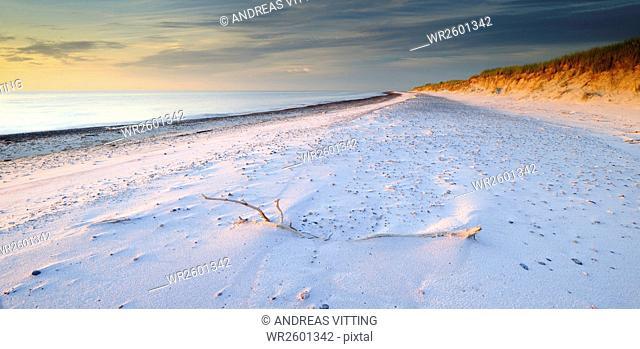 Endless sandy beach in evening light, west coast, Darß, Baltic Sea, Western Pomerania Lagoon Area National Park, Mecklenburg-Western Pomerania, Germany