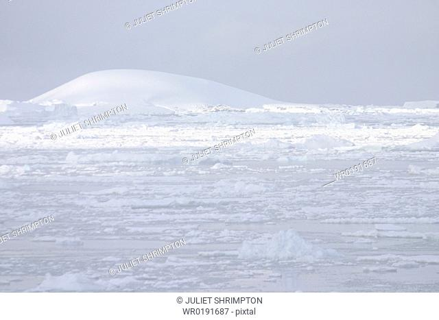 View across snow fields, tabular iceburgs Antarctica Peninsula A4 only