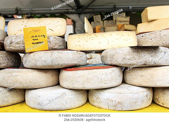 Moncalvo, Italy - October 18,2015: Closeup of Italian cheese with relative price tags at the Moncalvo truffle fair