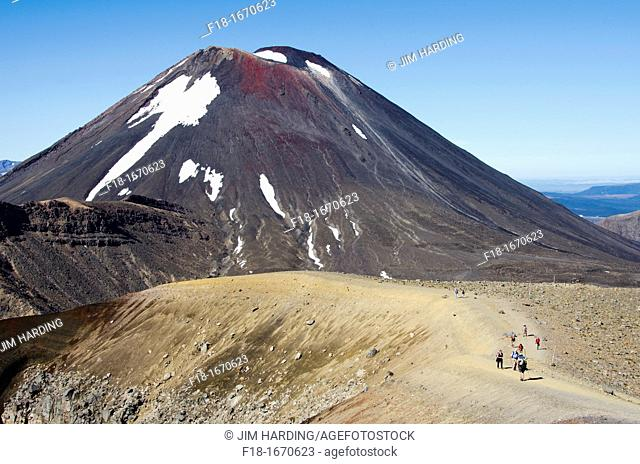 View fromRed Crater to Mt Ngauruhoe beyond, Tongariro Natinal Park, New Zealand
