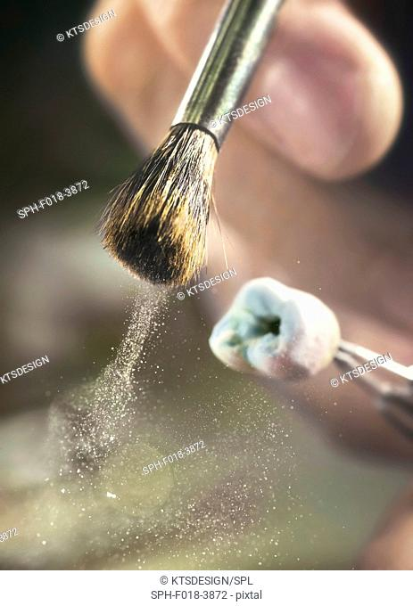 Person brushing prosthetic tooth, close up