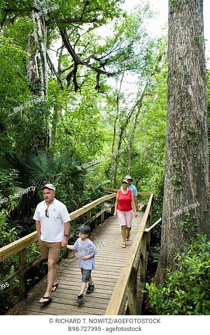 Big Cypress Bend Boardwalk, family walking in Everglades National Park, Florida