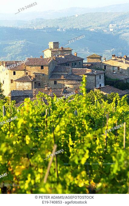Vineyard and village. Volpaia. Tuscany. Italy
