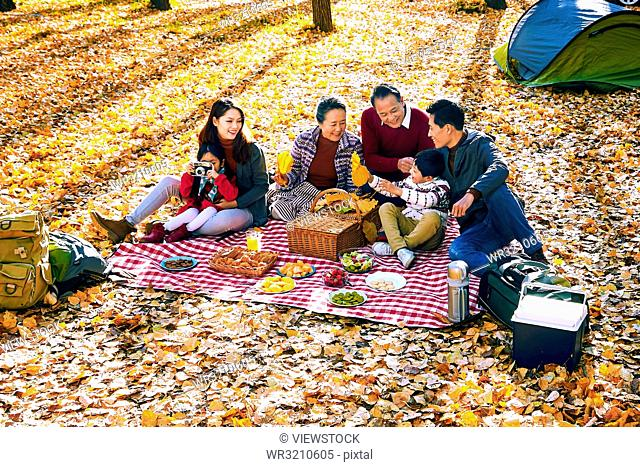 Happy family outdoor outing