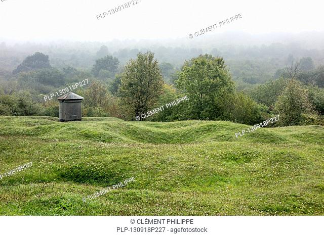 Preserved First World War One battlefield showing bomb craters near Douaumont, Lorraine, Battle of Verdun, France