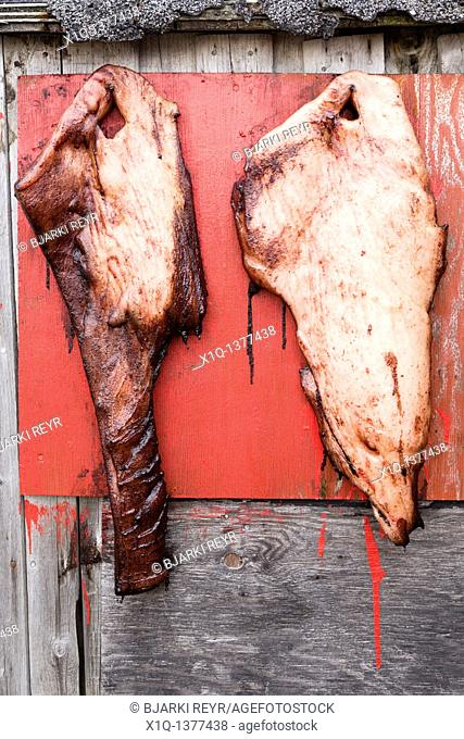 Meat hanging to dry, Narsaq, South Greenland