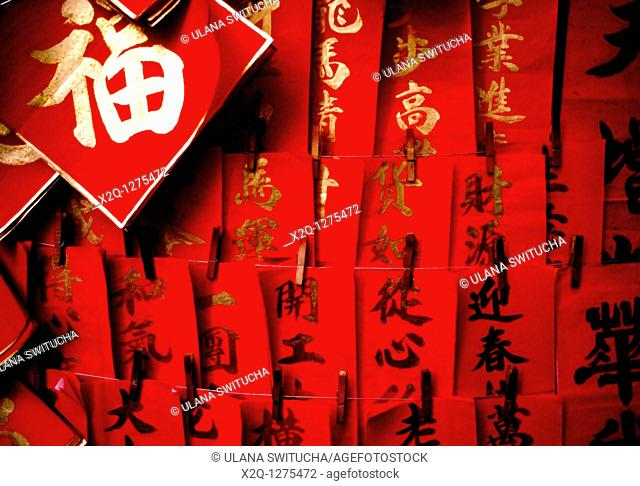 Hand painted Chinese Lunar New Year banners bring good luck and fortune