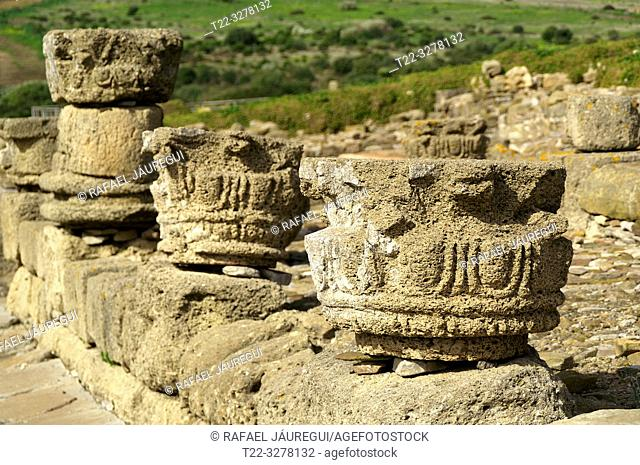 Rate (Spain). Archaeological remains of stems in Roman city of Baelo Claudia