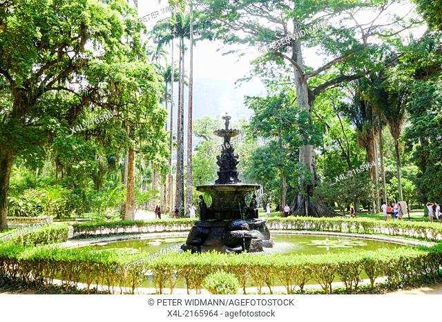 Rio de Janeiro, botanical garden, Jardim Botanico, Brazil