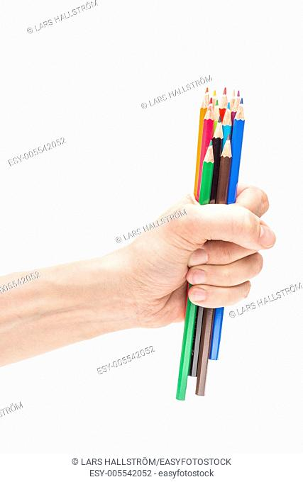 Closeup on white background of male hand holding group of colorful pencils used for drawing and creative sketching