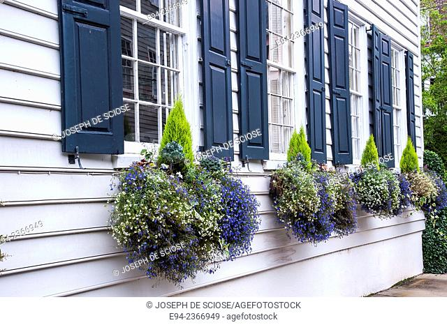 Historic home in Charleston South Carolina with window boxes on the side