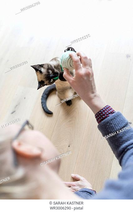 Woman is playing with cat