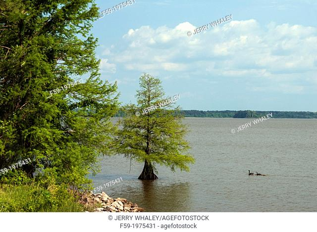Natchez Trace, Mississippi