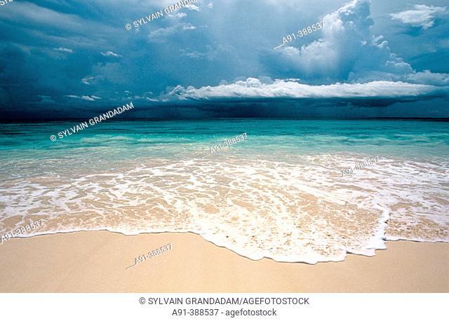 Beach, Harbour island. Bahamas, Caribbean